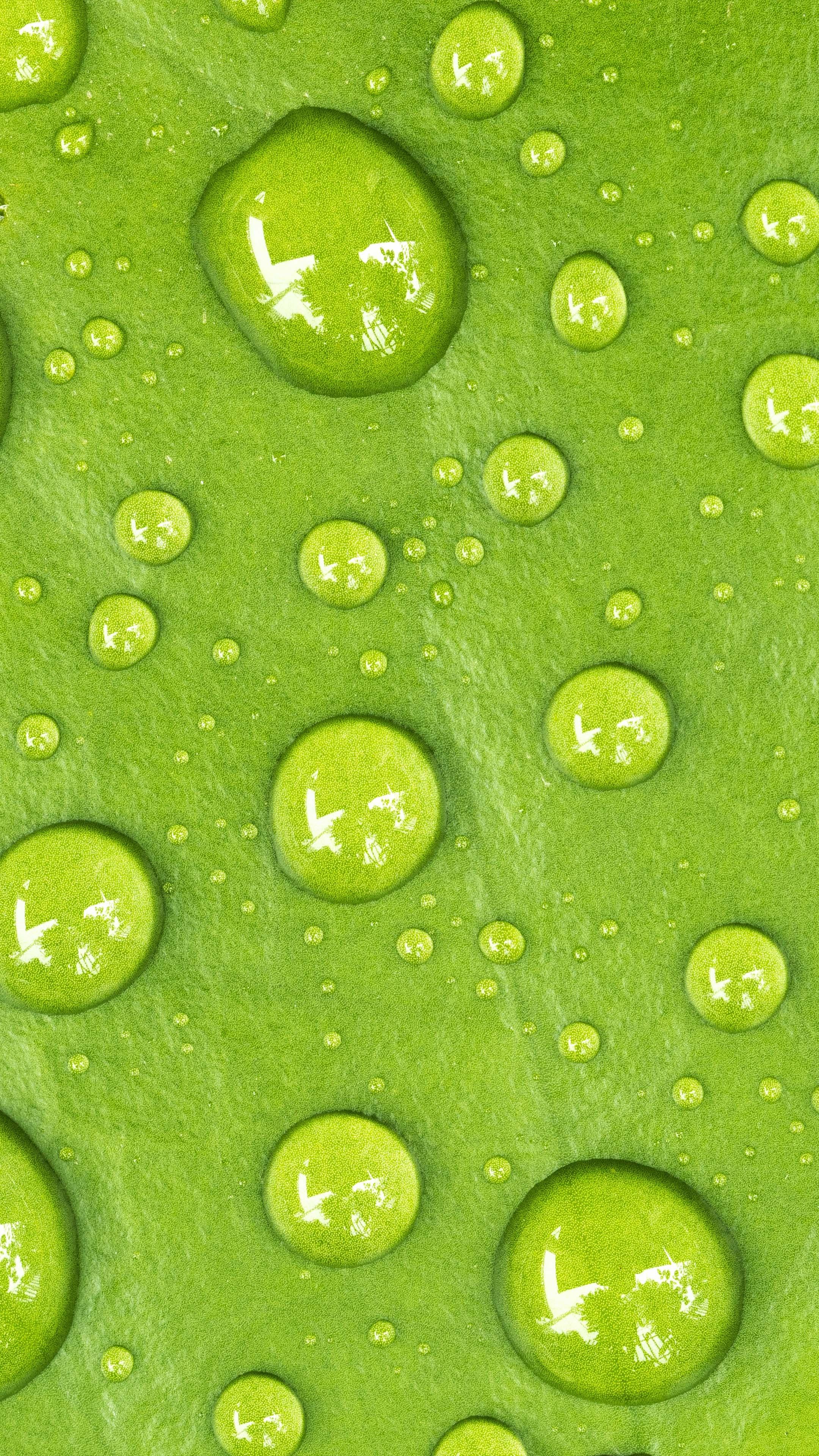 Water Drop Green Macro 4k Ultra Hd Mobile Wallpaper