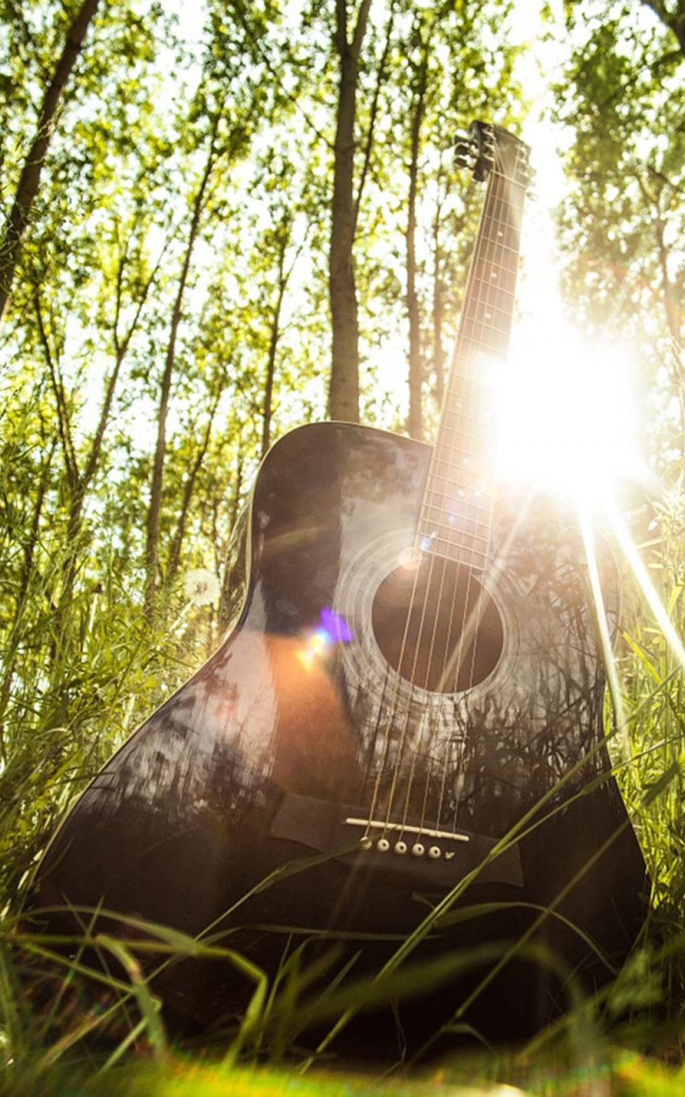 Acoustic Guitar Download Free Hd Mobile Wallpapers