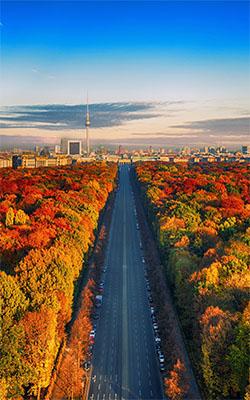 Autumn in Berlin Mobile Wallpaper Preview