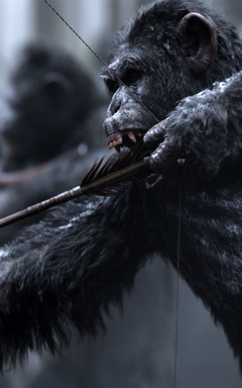 War For The Planet Of The Apes 2017 Movie Download Free Hd Mobile Wallpapers