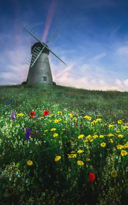 Whitburn Windmill Mobile Wallpaper Preview