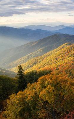 wild mountains north carolina Mobile Wallpaper Preview