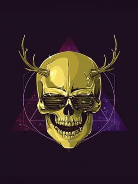 Hipster Skull Art HD Mobile Wallpaper Preview