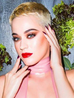 Katy Perry Bon Appetit HD Mobile Wallpaper Preview