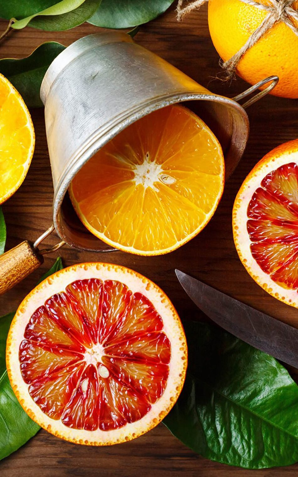Fresh Oranges HD Mobile Wallpaper