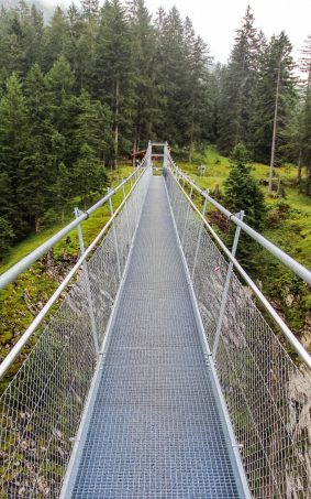 Forest Bridge HD Mobile Wallpaper