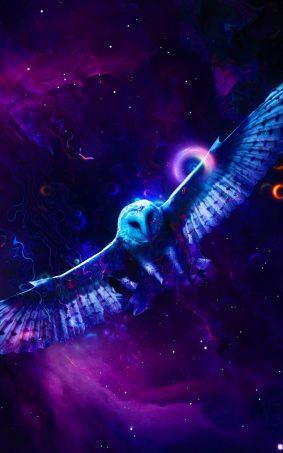 Neon Owl HD Mobile Wallpaper