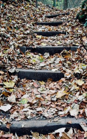 Autumn Foliage Stairs HD Mobile Wallpaper