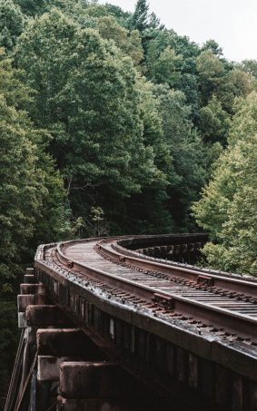 Railway Through Forest Trees HD Mobile Wallpaper