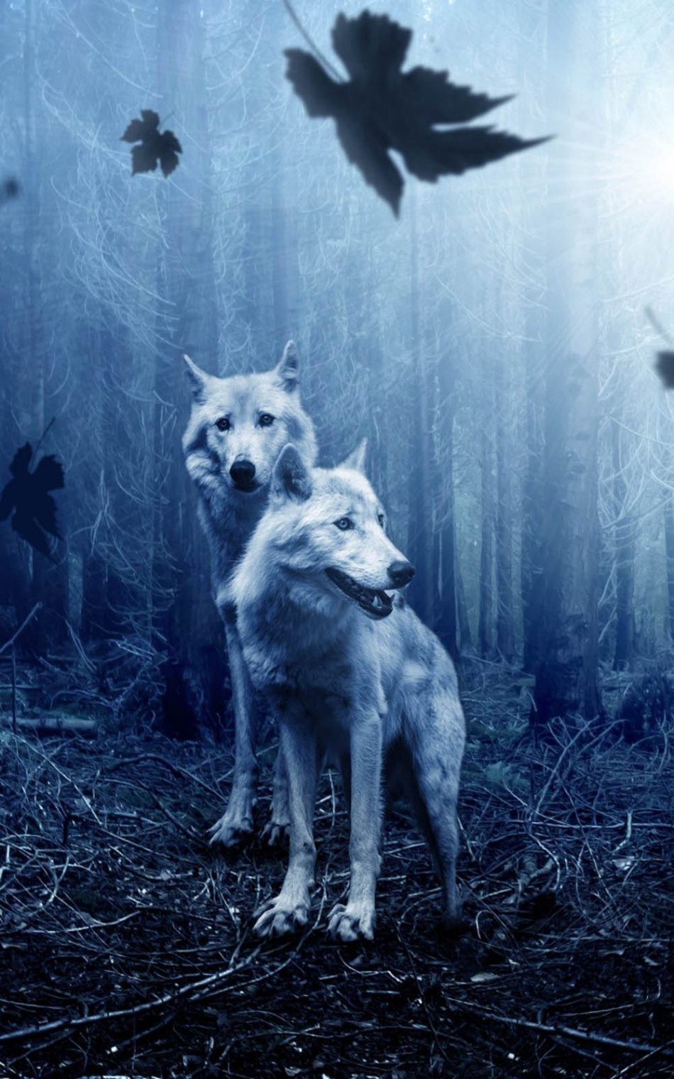 Top Wallpaper Night Forest - Wolves-Night-Forest-HD-Mobile-Wallpaper-950x1520  Snapshot-413987.jpg