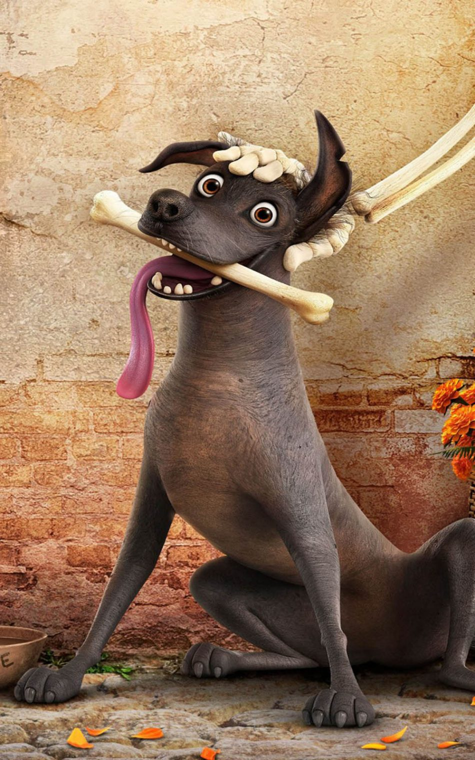 Dante Dog In Coco Download Free 100 Pure Hd Quality
