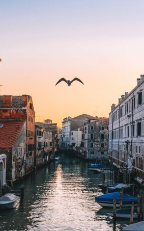 Venice Italy Evening Sunset HD Mobile Wallpaper