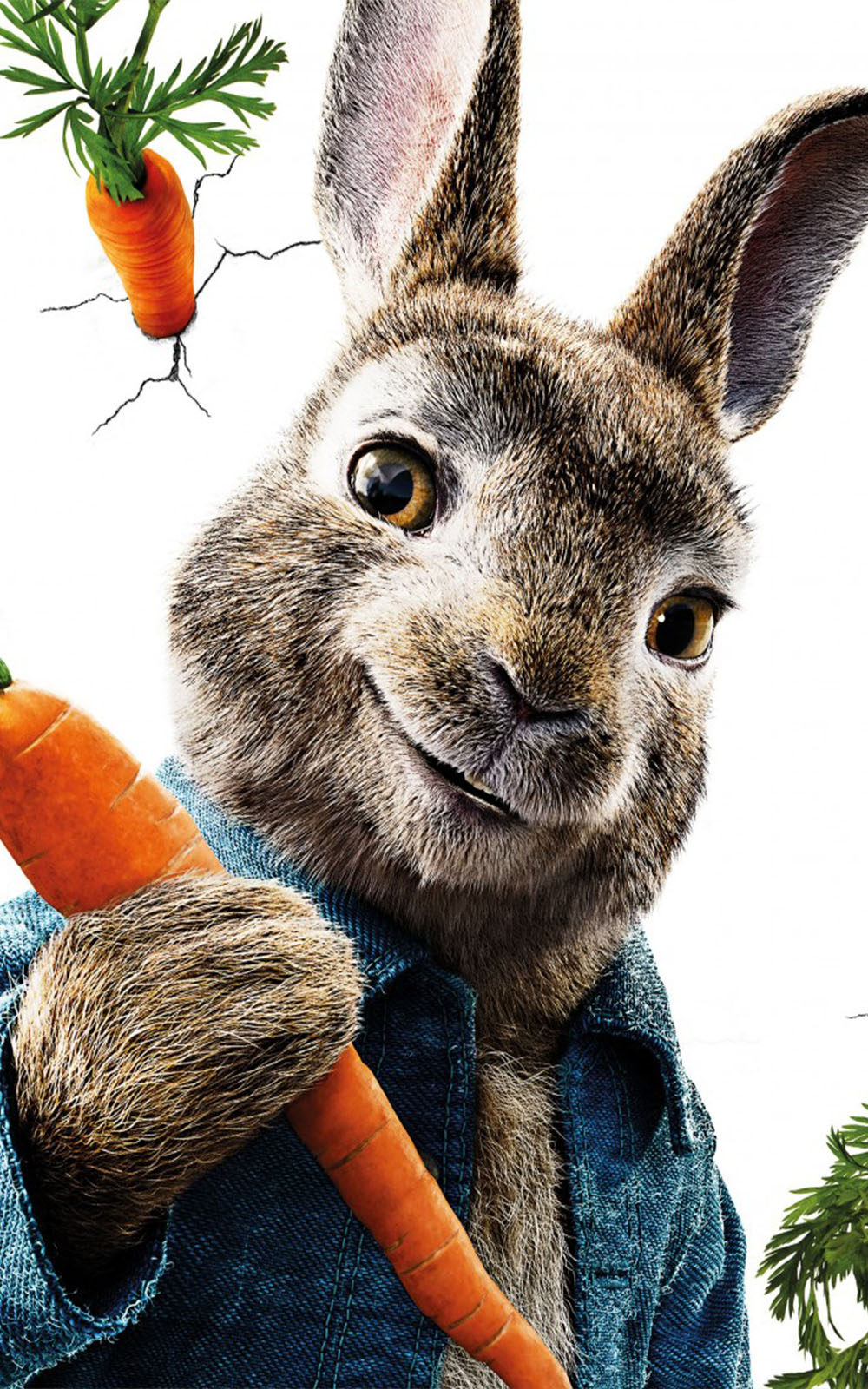 Peter Rabbit Movie - Download Free 100% Pure HD Quality ...
