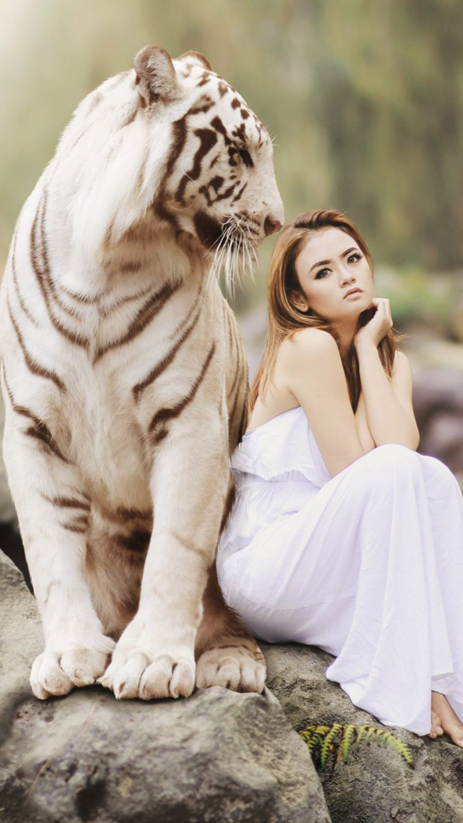 Asian Model With White Tiger Photoshoot 4k Ultra Hd Mobile Wallpaper