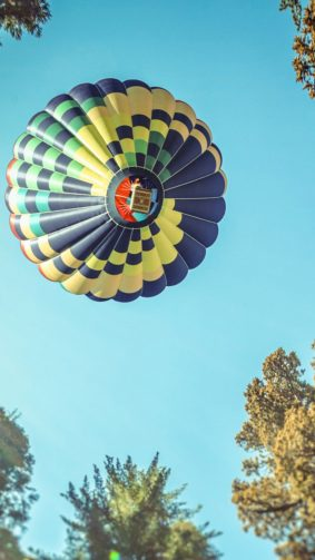 Hot Air Balloon In Sequoia National Park HD Mobile Wallpaper