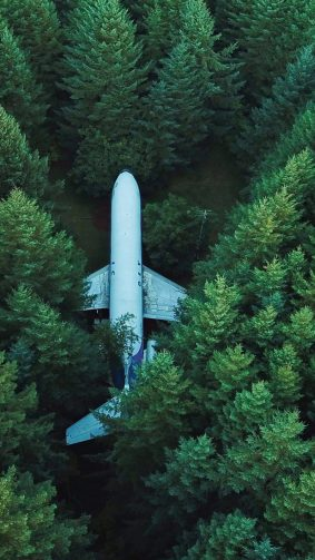 Plane Aircraft Forest Surrounded HD Mobile Wallpaper