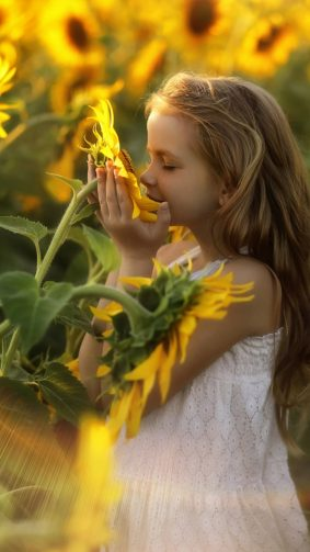 Child Relax Sunflowers Morning 4K Ultra HD Mobile Wallpaper
