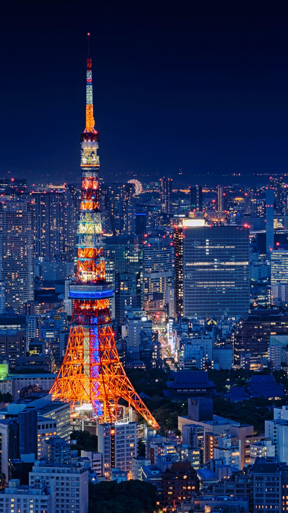 Tokyo Tower Japan Night Cityscape 4K Ultra HD Mobile Wallpaper