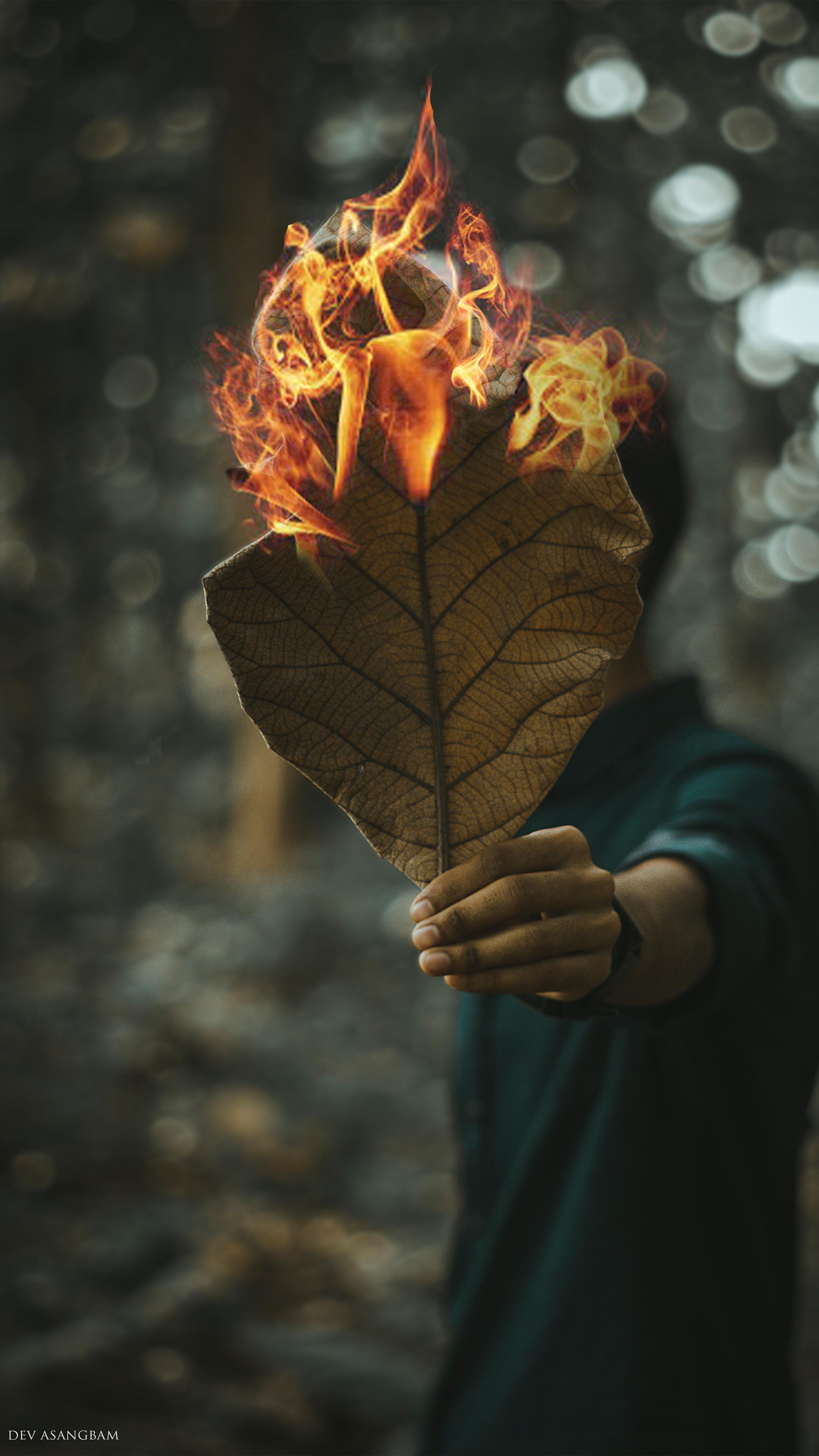 Man Leaves Fire Photography 4K Ultra HD Mobile Wallpaper