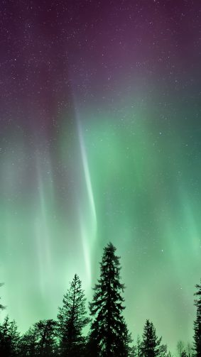 Amazing Northern Lights Aurora Borealis 4K Ultra HD Mobile Wallpaper