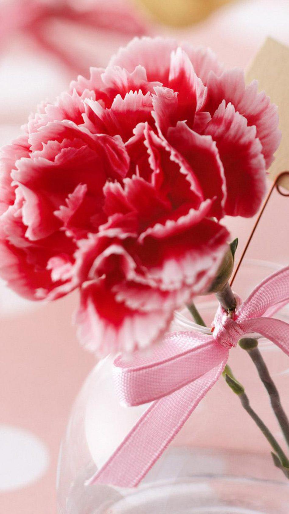 Valentine's Day Flower 4K Ultra HD Mobile Wallpaper