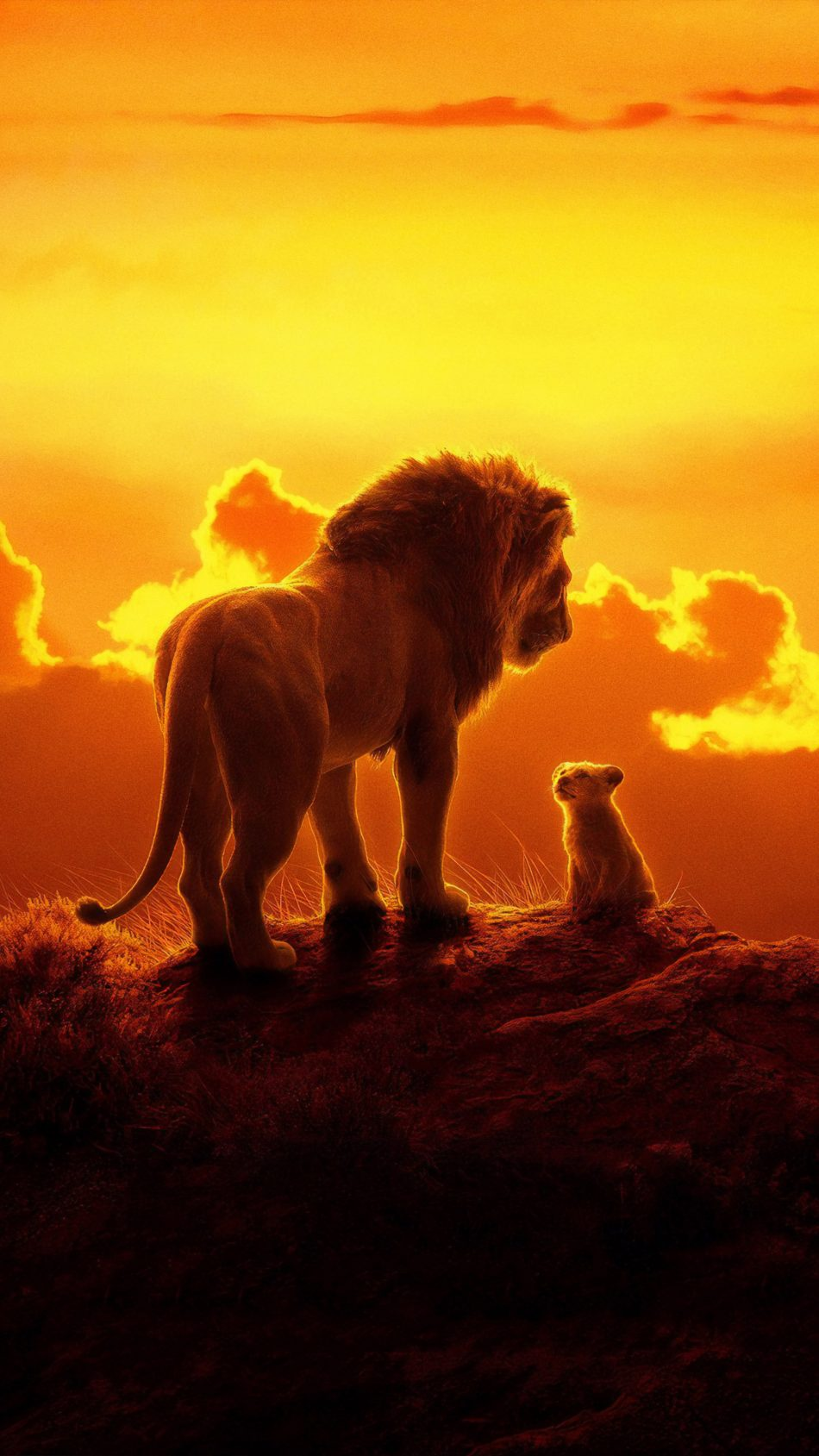 The Lion King Animation 2019 4K Ultra HD Mobile Wallpaper