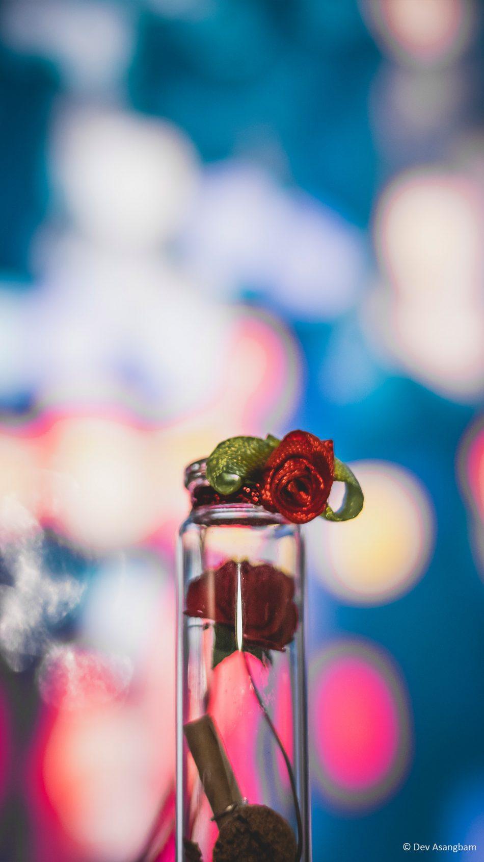 Tube Flower Decoration Bokeh 4K Ultra HD Mobile Wallpaper