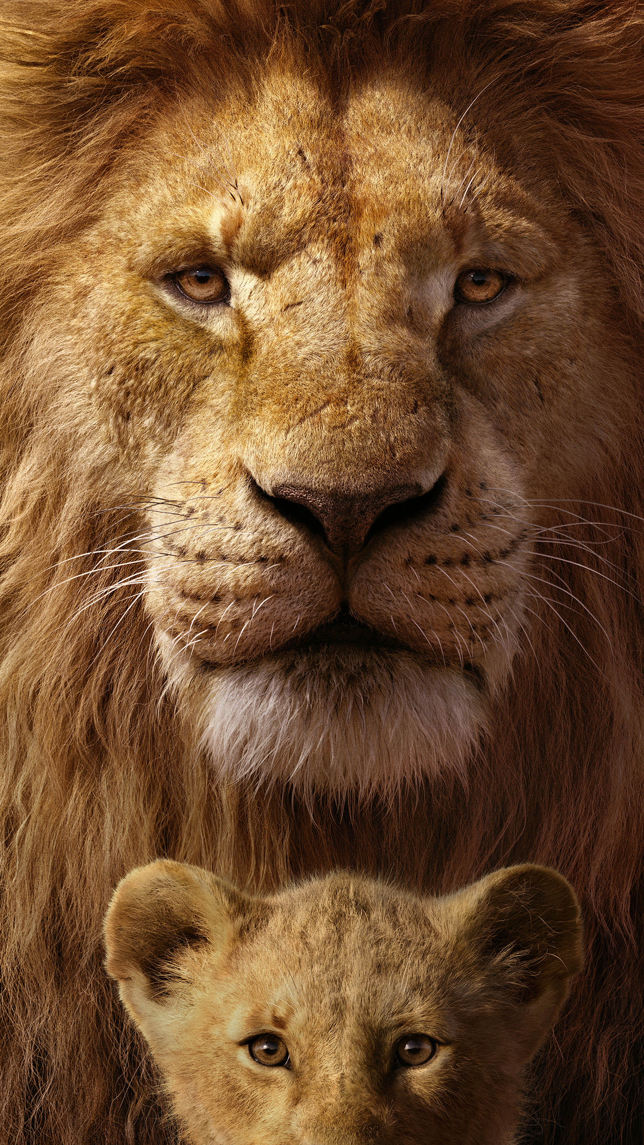 Download mufasa simba in the lion king free pure 4k - Lion 4k wallpaper for mobile ...