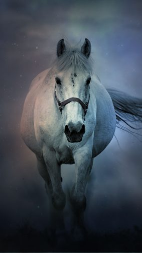 White Horse Running 4K Ultra HD Mobile Wallpaper