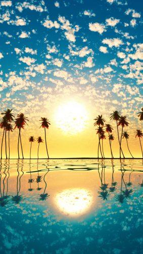 Sunset Palm Tree Cloud Sky Reflection 4K Ultra HD Mobile Wallpaper