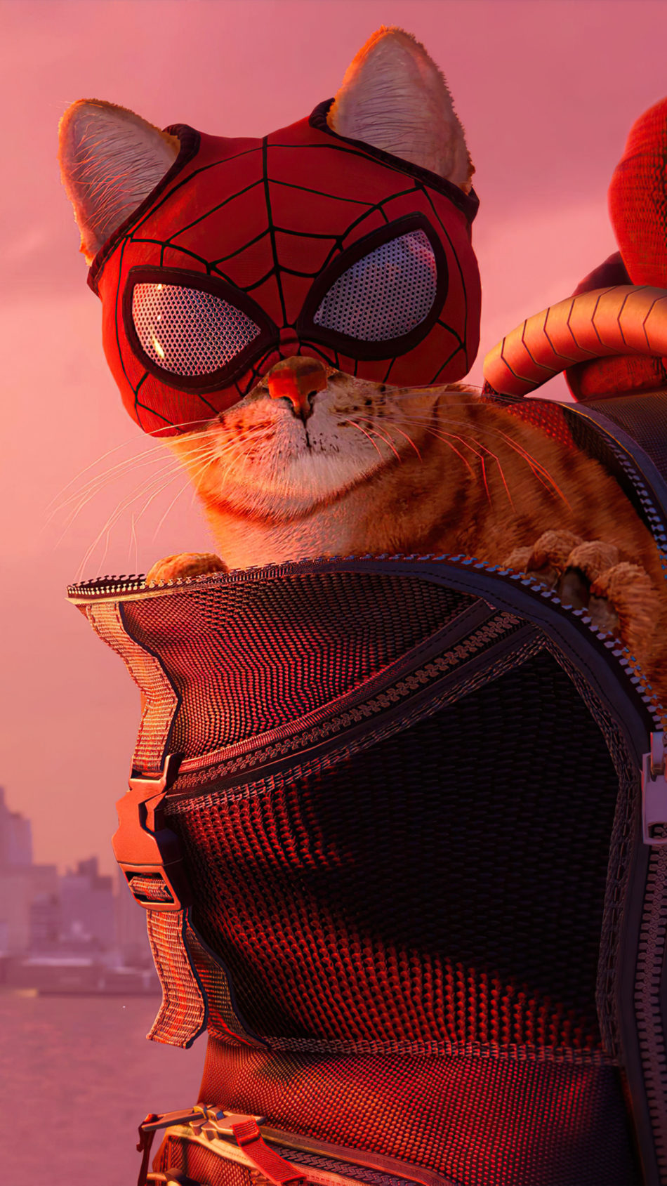 Spider-cat Spider-man Miles Morales 2021 Game 4K Ultra HD Mobile Wallpaper